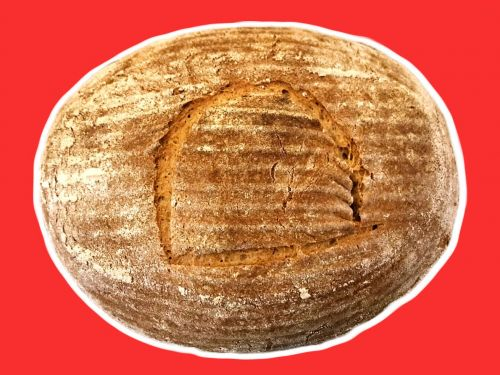 A Conversation With the Team That Made Bread With Ancient Egyptian Yeast
