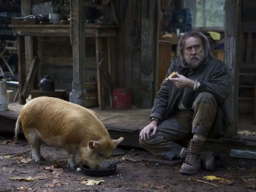 Here's the Trailer for Nic Cage's Truffle Pig Kidnapping Movie 'Pig'