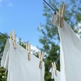 Make Your Next Load of Laundry More Eco-Friendly With These 10 Sustainable Solutions