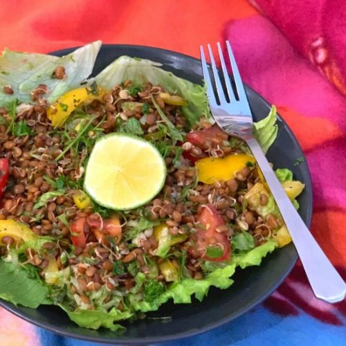 Sprouted Horse gram Salad