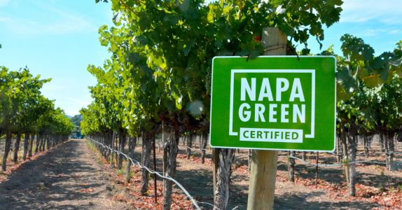 Napa Green: How One Sustainability Program Is Working to Save Napa Valley