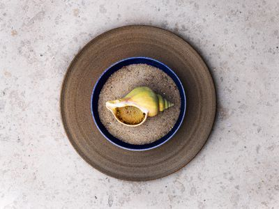 What It Took to Create the Stunning, Sea-Focused New Noma Menu