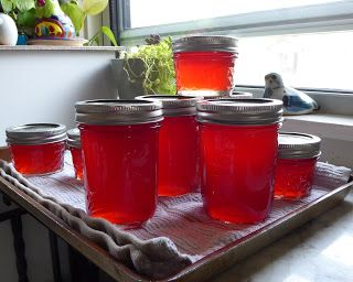 Blood Orange Mimosa Jelly