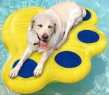 My Dog Will Be Living His Best Life All Summer on This Pet Pool Float From Walmart