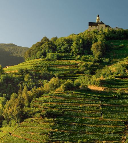 Win a Trip to Italy! Italian Recipe Contest with Cavit Wines