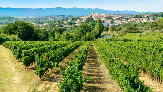 Languedoc's Road to Redemption Is Awash in Rosé
