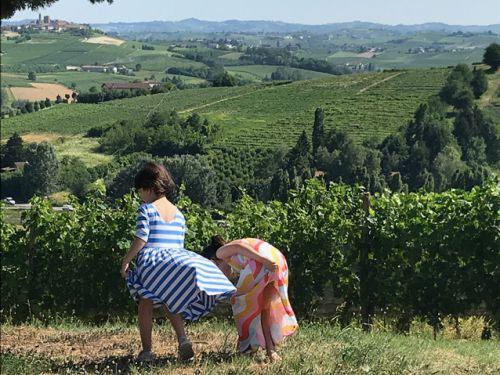 Take your children for a walk in a vineyard. You won't regret it