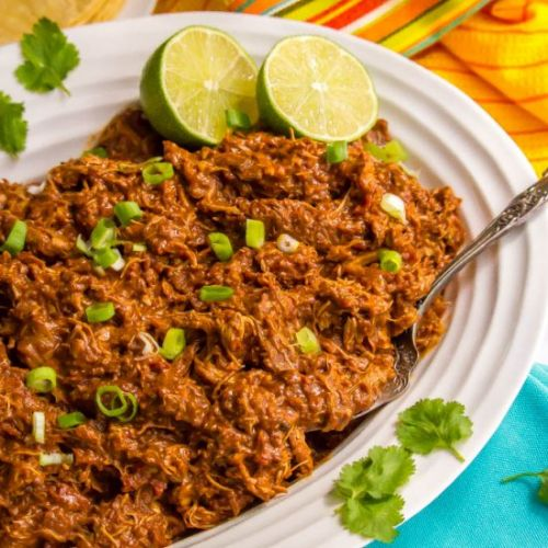 Easy slow cooker mole chicken
