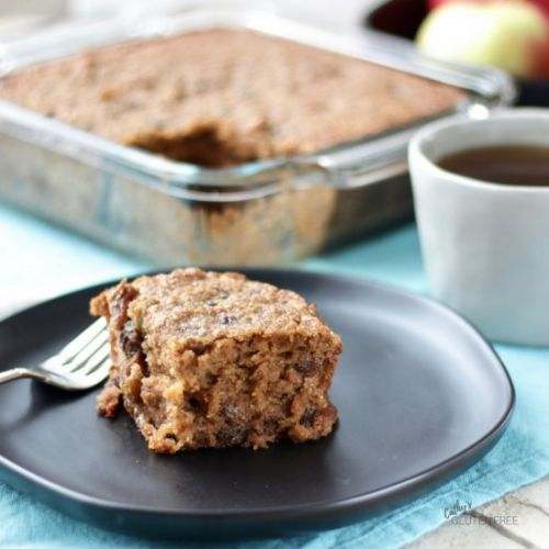 Gluten Free Applesauce Spice Cake