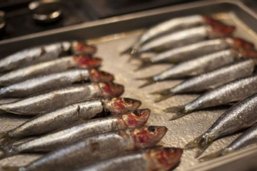 Class Recap: Feast of The 7 Fishes With Damon Menapace of Le Virtù