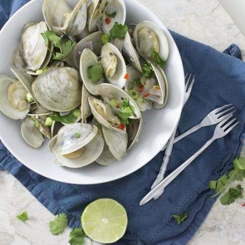 Coconut Thai Steamed Clams