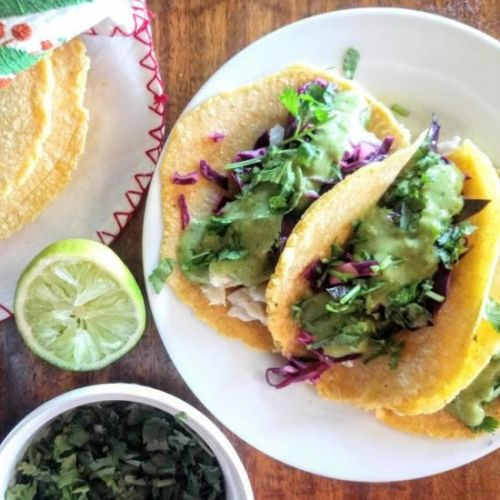 Fish Tacos with Avocado Lime Sauce