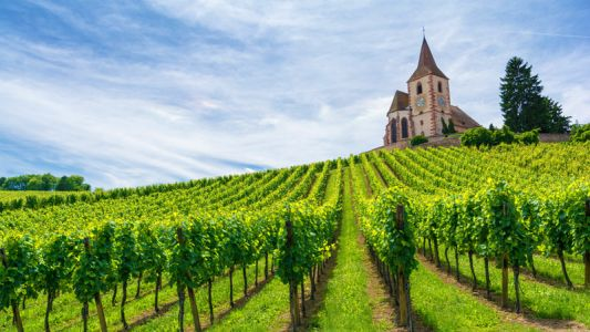 4 Reasons Why Alsace Rocks