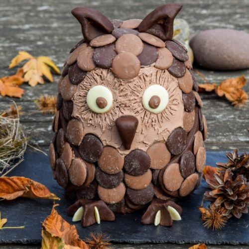 Chocolate Orange Halloween Owl Cake