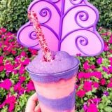 Get Ready to Go Mad! Disney World Has an Instagram-Worthy Cheshire Cat-Themed Slush