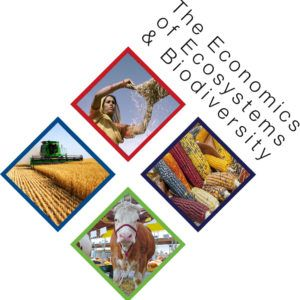 Bringing to Light the Hidden Costs and Impacts of Our Food System