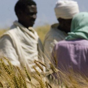 """Tutwiler: """"Agrobiodiversity holds the key to future food security"""""""