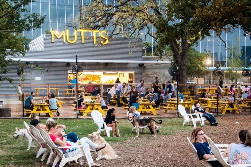 Mutts Canine Cantina Chooses Fransmart to Take Them Nationwide with Their Trend-Setting Restaurant/Cocktail Bar/Off-Leash Dog Park Eatertainment Concept
