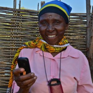 The CGIAR Platform for Big Data in Agriculture: Leveraging New Tools for Gender Equality