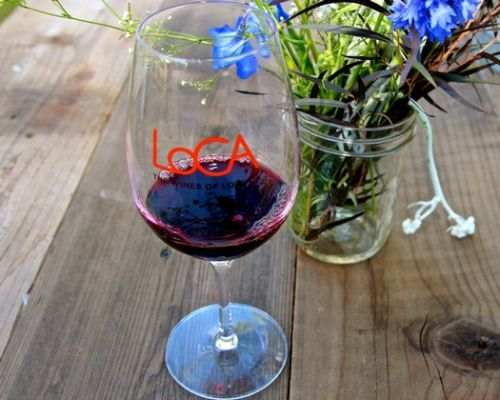 The first time (falling in love with wine and the wine business)