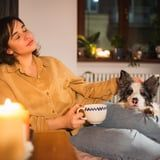 Everything You Need to Know About Using Candles, Air Fresheners, and More With Your Pets