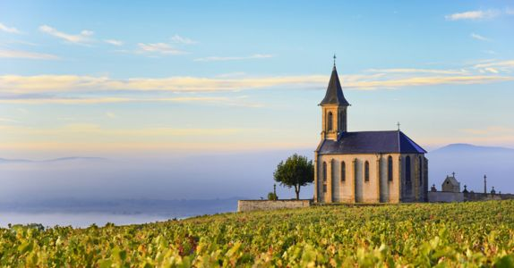 9 Questions About Beaujolais You're Too Embarrassed to Ask