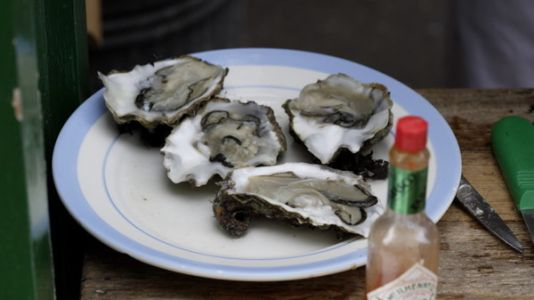 Business Adapts To Deliver The World, In A Long Island Oyster, Door To Door