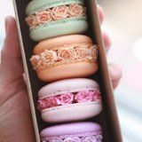 """These Gorgeous """"Macaron Blossoms"""" Are Like a Secret Garden For Your Eyes AND Mouth"""