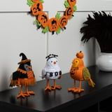 Let's Have a Moment of Silence For These Adorable Halloween Birds From Target, Shall We?