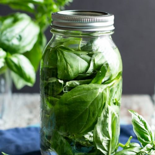 Basil Infused Vodka