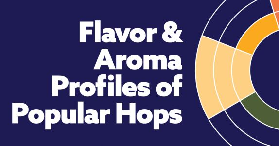 The Flavors & Aromas in Craft Beer's Popular Hops