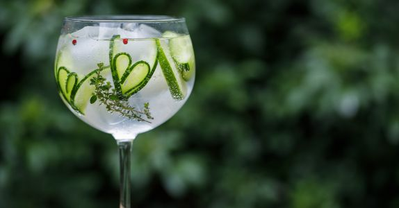 The 12 Best Gins for Gin and Tonics