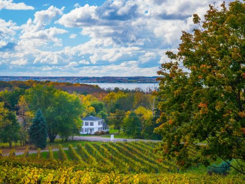 An Eater's Guide to the Finger Lakes